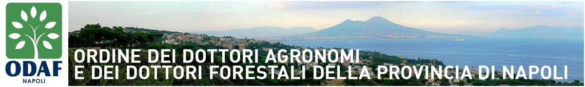 Ordine dei dottori agronomi e dei dottori forestali della provincia di Napoli